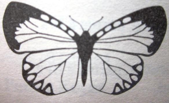 Fluture Irina Binder